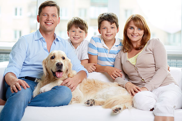 Tips For Family Dental Care  From A Top Ballston Spa, NY, Dentist